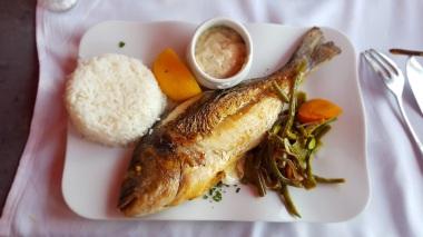 Sophie's Fisch